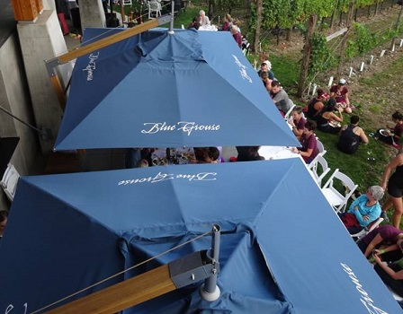 cantilever parasol canopies - view from above
